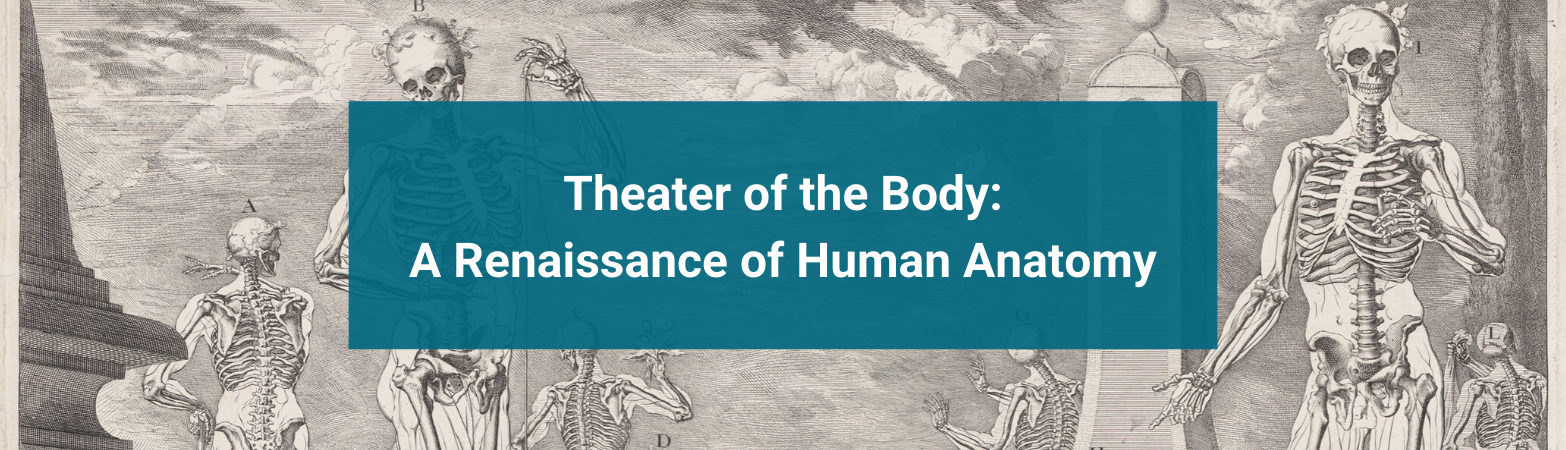 Theater of the Body: A Renaissance of Human Anatomy
