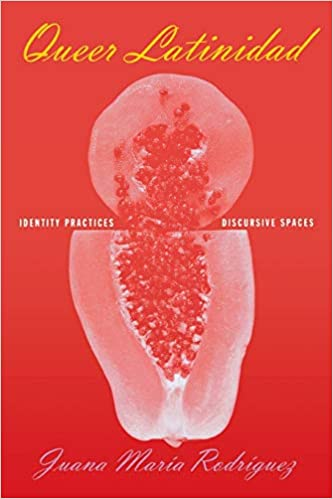 """Book cover of """"Queer Latinidad : Identity Practices, Discursive Spaces"""""""